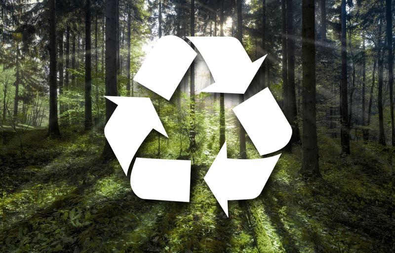 Ekologia / Bigo - Producent artykułów biurowych z kartonu bezkwasowego